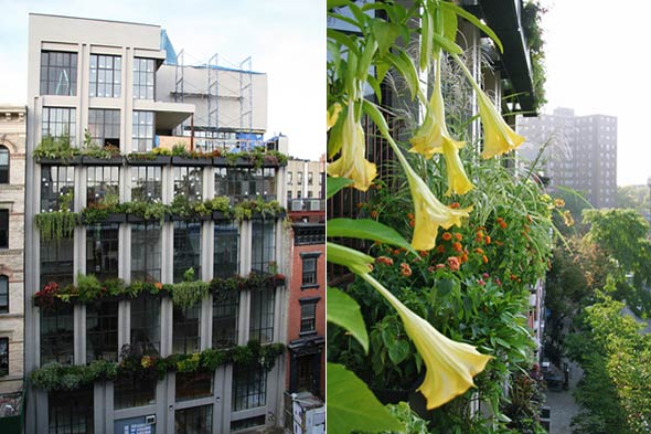 East Village split vertical garden