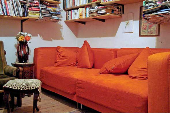 sofa color
