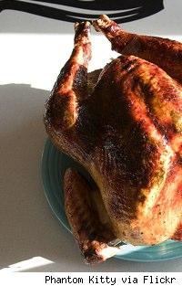most of a gorgeously roasted turkey