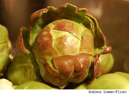 artsy brussels sprout shot