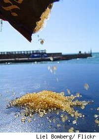 Brown sugar being poured from a bag onto a table outside.