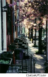 delancy street in bloom