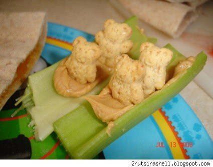 Cookie bears in a celery boat