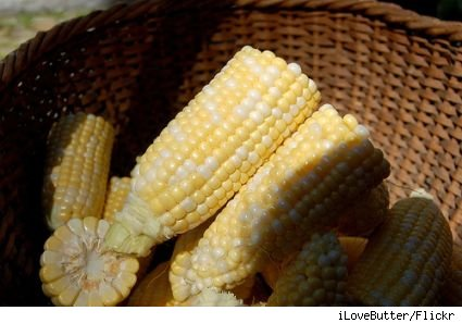 A basket of fresh ears of corn, husked and cut in half.