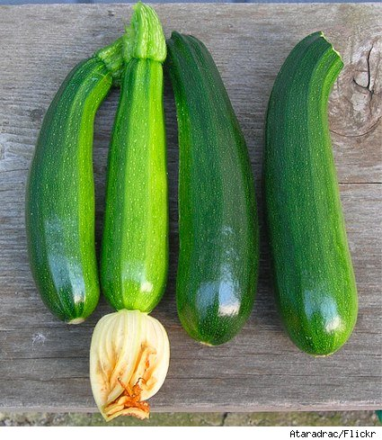 freshly harvested zucchini on a wooden picnic table