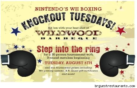 nintendo wii flyer