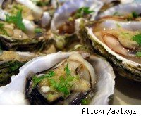 oysters from flickr