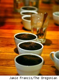 coffee cupping set-up