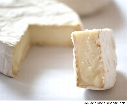 Willow Hill Vermont Brebis - Bloomy Rind Cheese