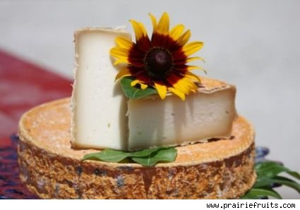 Moonglo Cheese from Prairie Fruits Farm
