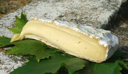 Brie de Melun