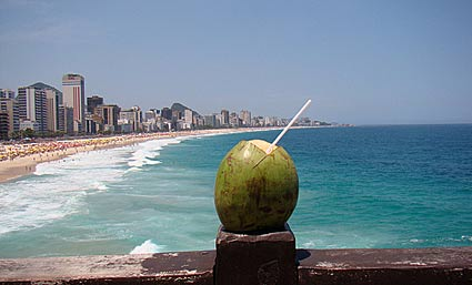 coconut on the beach in rio de janeiro