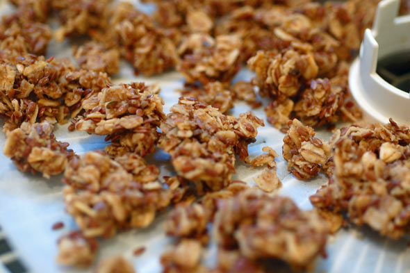 Homemade Granola Recipes on AOL Answers.