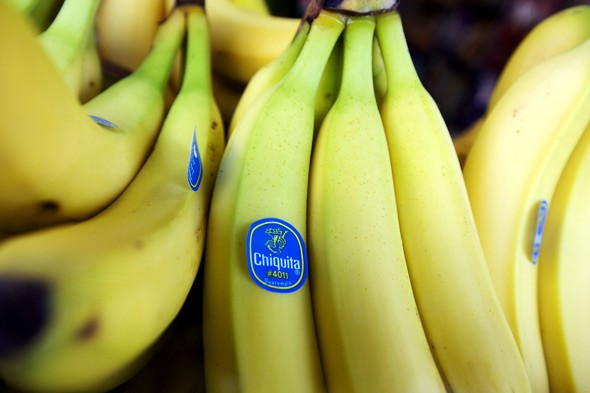 ethics and chiquita Introduction this paper will talk about chiquita, which is one of the world's top banana producers, and mercenary protection first i will introduce the background of chiquita and auc, and.