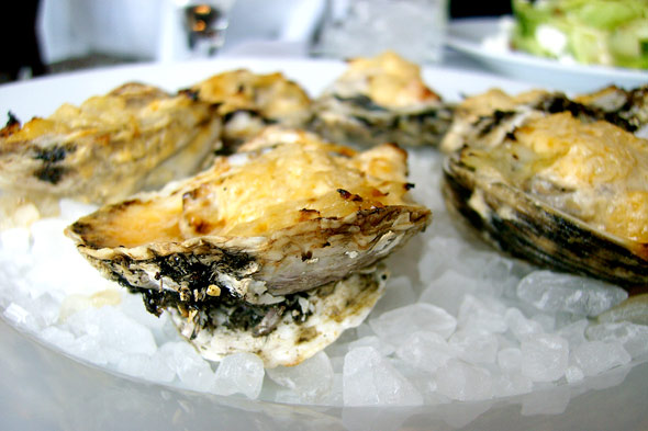 roasted oysters at Coquette restaurant