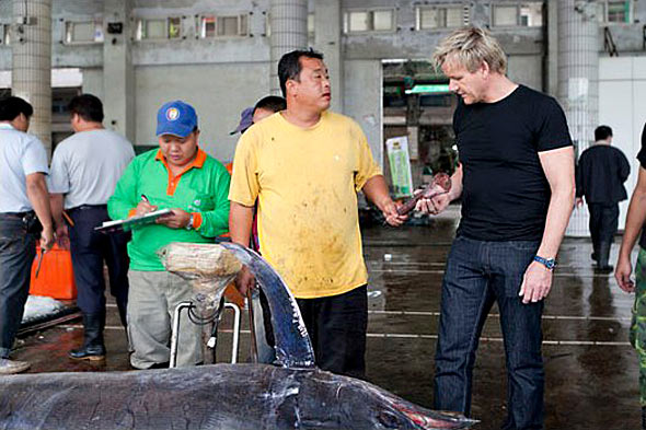 Gordon Ramsay in Big Fish Fight UK TV show