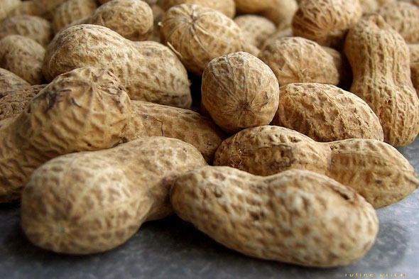 peanuts common food allergies