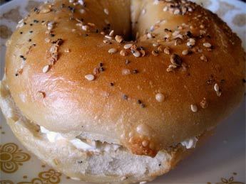 untoasted bagel