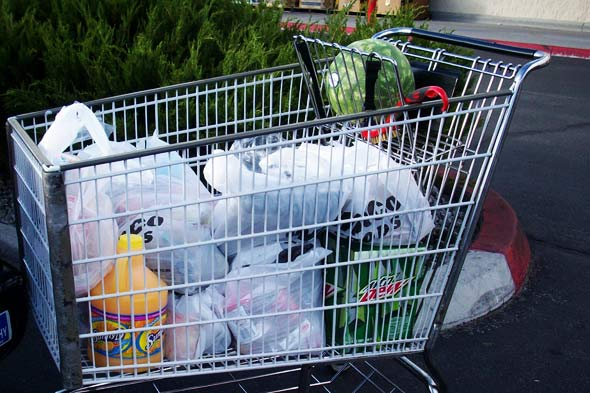 plastic bags being banned
