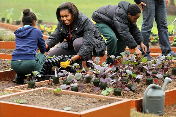 Michelle Obama gardening at the White House kitchen garden