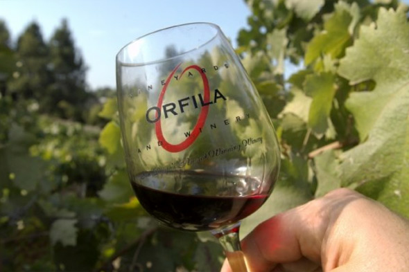 California Syrah wines