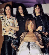 Iggy Pop and the Stooges
