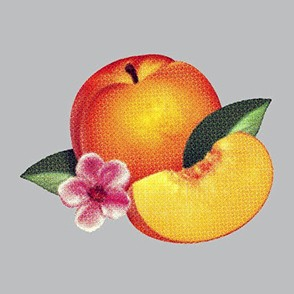 Phoenix Bankrupt! New Album Art