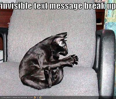 LOLCats - Page 2 Funny-pictures-black-cat-invisible-text-message-breakup