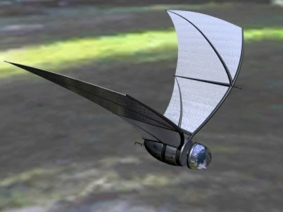 Army Developing Tiny Spy-Bat