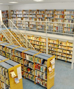 Library for Internet usage