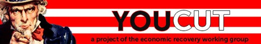YouCut Lets Voters Decide on Spending
