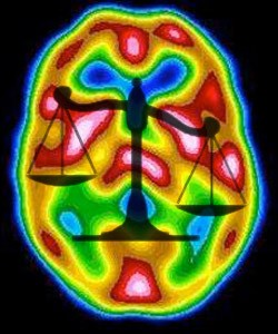 brain scans not ready for court use
