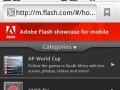 Adobe has even compiled a quick showcase of what mobile Flash is capable of.