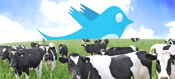 Twitter on the Farm