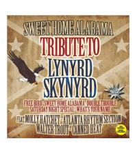 Tribute to Lynyrd Skynyrd