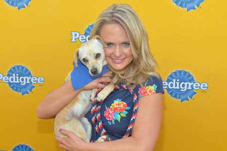 Miranda Lambert Oklahoma Animal Rescue Efforts