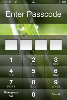 iPhone 4-digit security code page