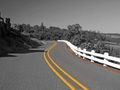 Grayscale image with color road