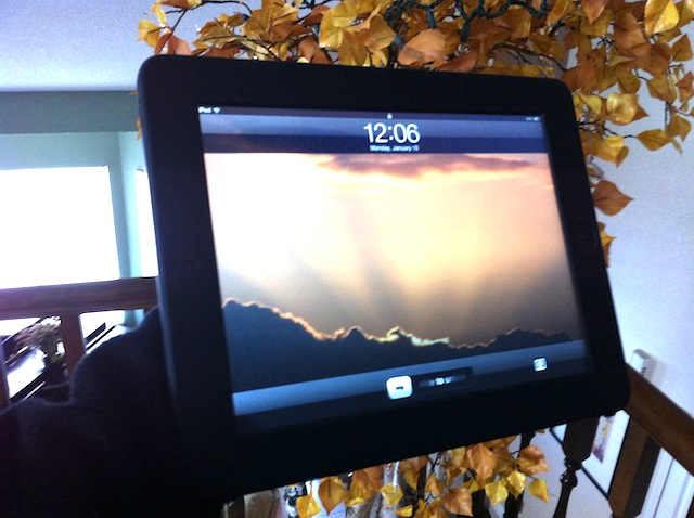 Holding an iPad with one hand