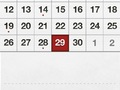 Calendar View