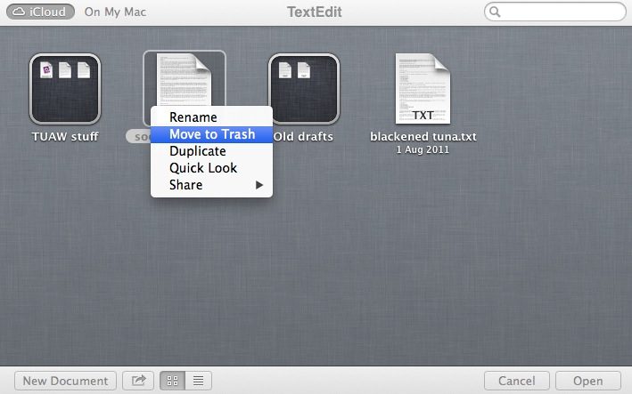 Renaming and manipulating iCloud documents