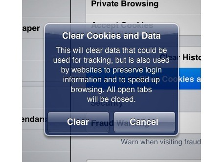 iPad 101 Clearing individual website cookies