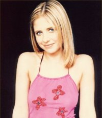 sarah michelle gellar see through