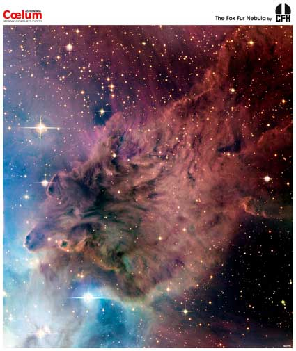 fox fur nebula, space