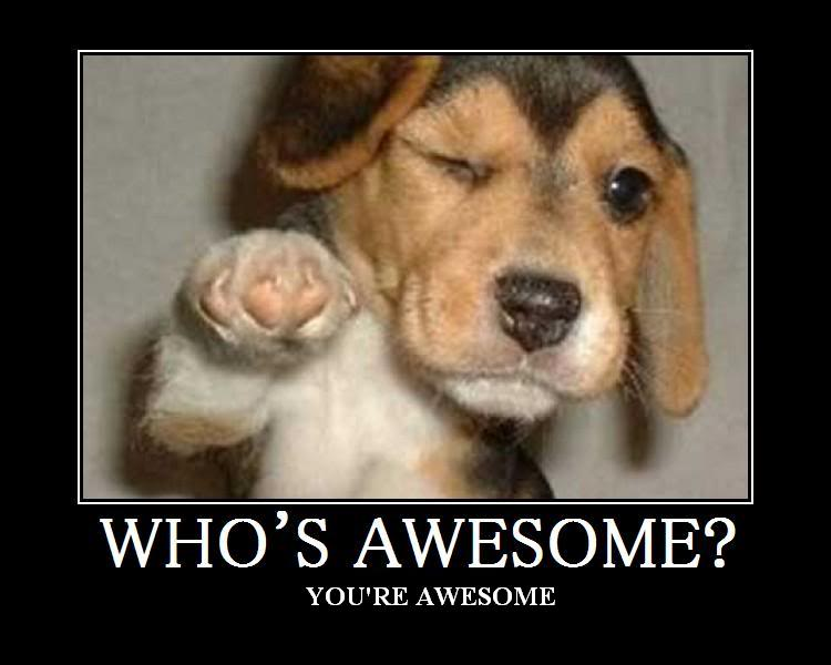 Who s awesome
