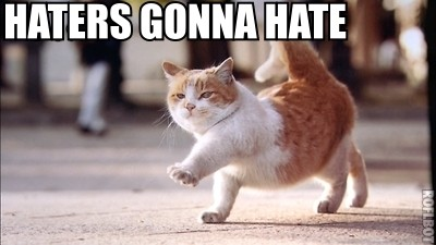 hatercat My Favorite Haters Gonna Hate Internet Photo