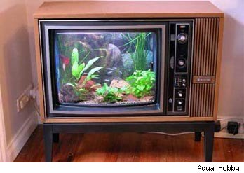 29 Crazy and Unique Fish Tanks - Urlesque