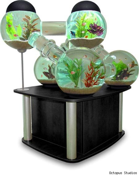 unusual fish tanks for sale 29 crazy and unique fish