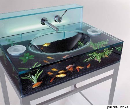 crazy and unique fish tank
