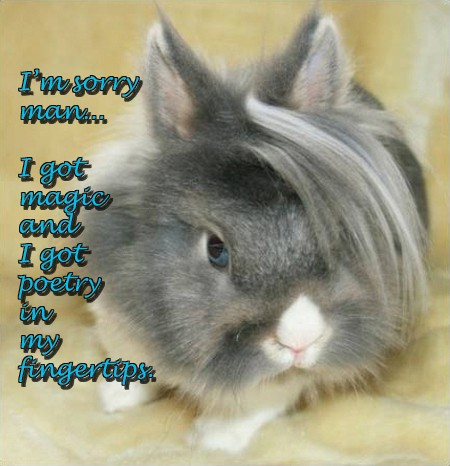 Charlie Sheen Quotes Presented By Cute Bunnies